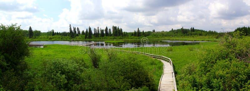 Small lake / pond in Whiteshell Provincialpark in Canada / Manitoba stock photo