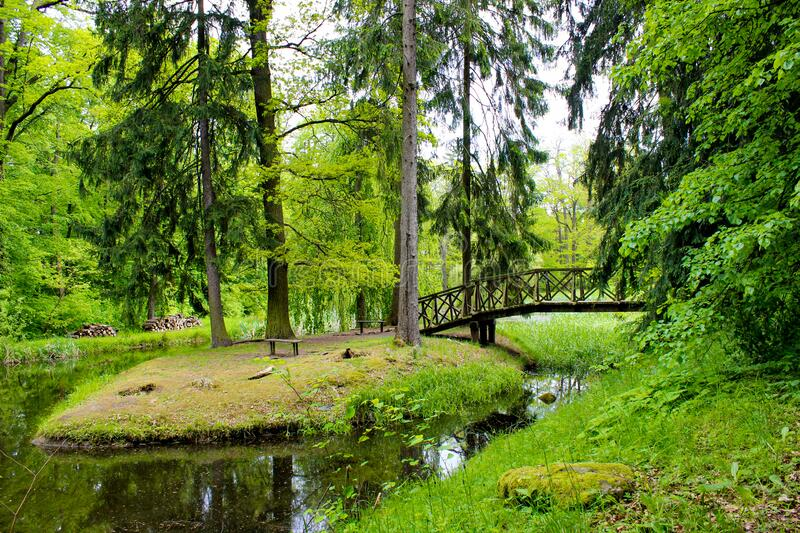 Small lake with reflections in a forest with trees and a bridge in Zamecky Park, in Hluboka nad Vltavou Czech Republic.  stock photography