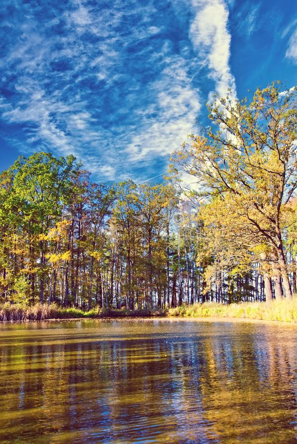 Small lake with several trees around in autumn time. Vertical photo with small lake. Photo is captured in autumn with several trees around with colorful leaves royalty free stock photography