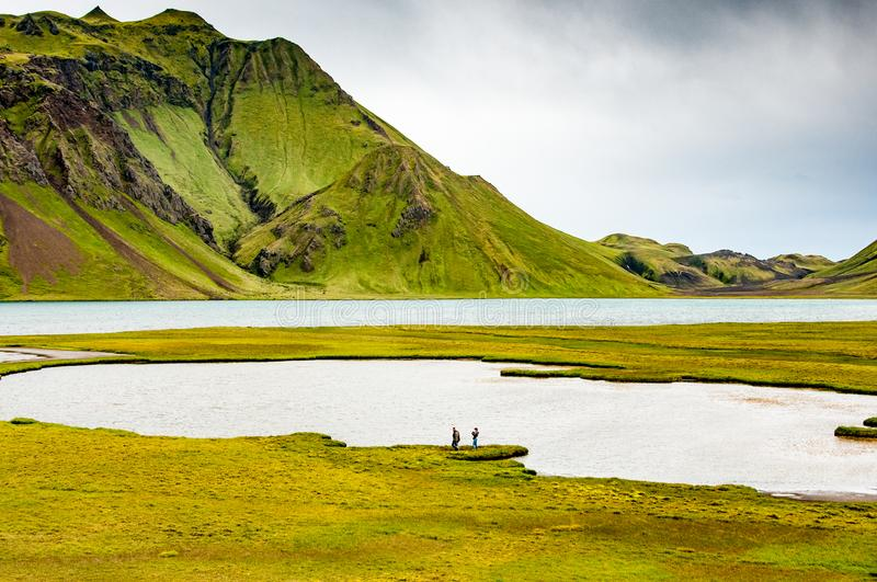 A small lake in the Landmannalaugar region in Iceland. A small lake surrounded by green grass meadows and mountains in the Landmannalaugar region, Iceland royalty free stock image