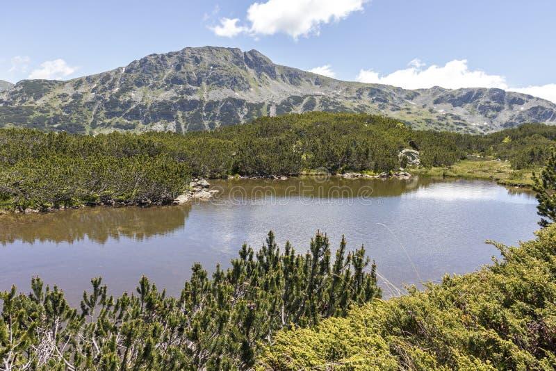 Small lakes near The Fish Lakes, Rila mountain, Bulgaria. Landscape with small lakes near The Fish Lakes Ribni Ezera, Rila mountain, Bulgaria royalty free stock photo