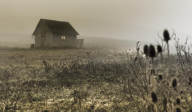 Small lonely provincial house on a foggy morning near Sic village, Transylvania, Romania.  stock images