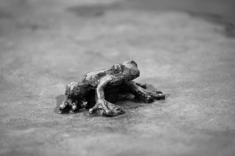 A small metal frog on a metal plate. stock photos