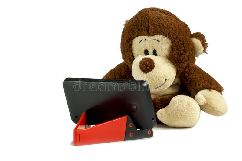 A small monkey sits and stares at a smartphone. Smartphone on a red stand.Isolated photo royalty free stock photography
