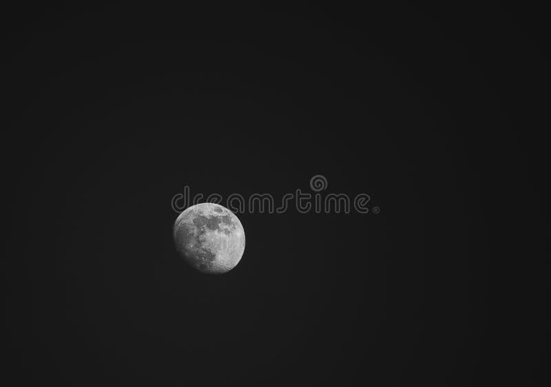 Small Moon royalty free stock photo