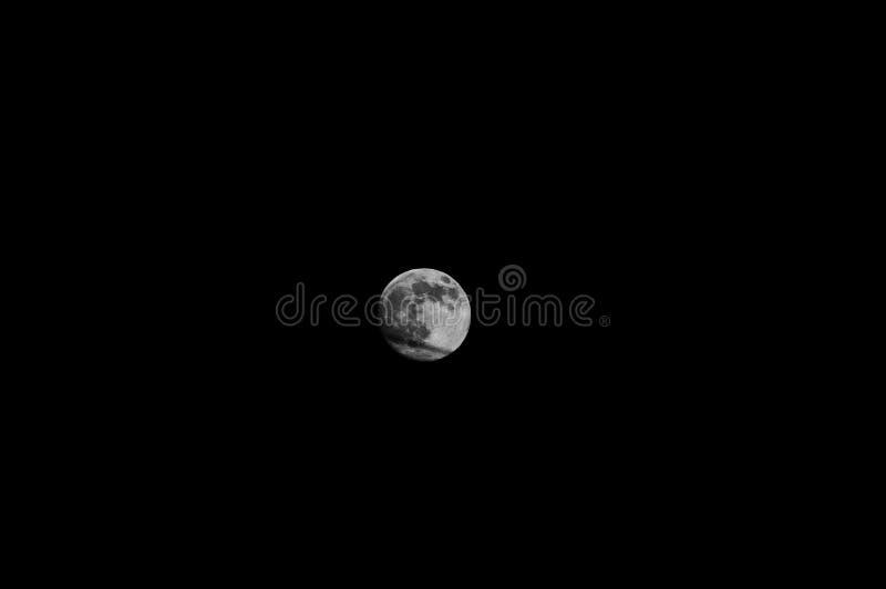 Small Moon royalty free stock photos