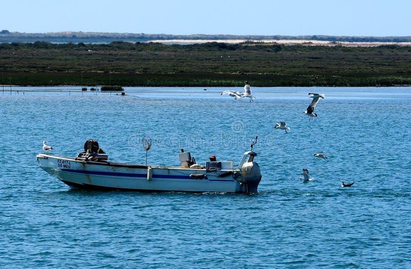 Small Motor Boat Anchored Off Olao Portugal royalty free stock photo