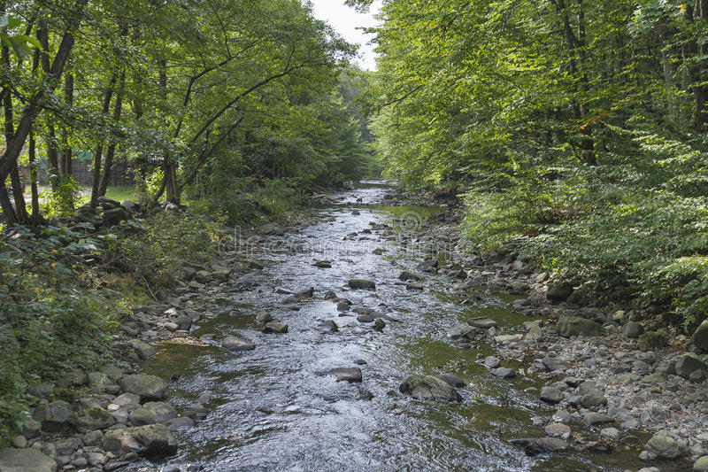 Small mountain river. In Carpathians, Ukraine stock images