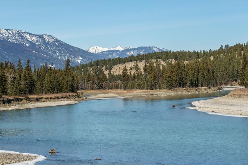 small mountain river in spring Regional District of East Kootenay Canada stock image