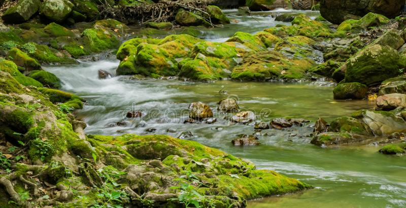 Small Mountain Trout Stream. Small rocky mountain trout stream located in the Jefferson National Forest, Botetourt County, Virginia, USA royalty free stock images