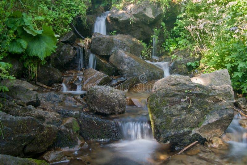 Small mountain waterfall royalty free stock photos