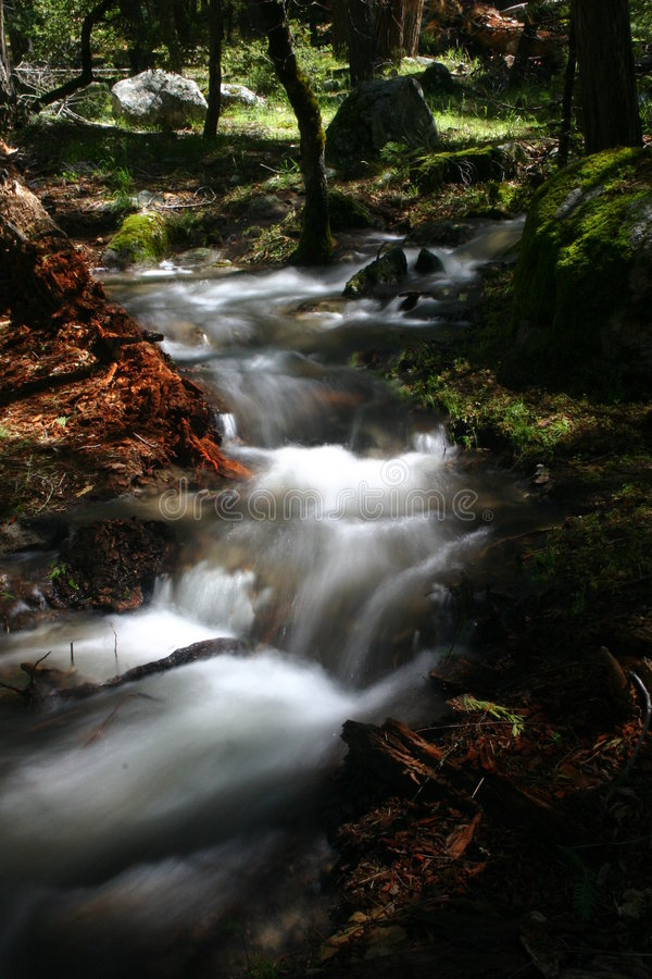 Small Moving Stream. Small stream caused by flooding in Yosemite National Park, California, U.S.A royalty free stock photos