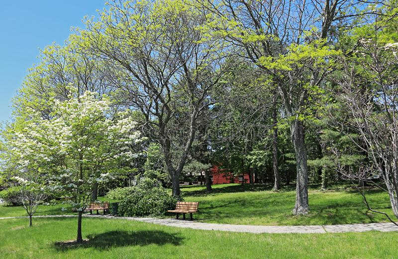 Small neighborhood park in residential area of Quincy, Massachusetts. At springtime royalty free stock images
