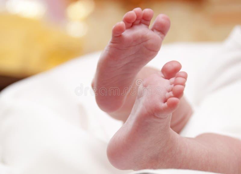 Small newborn's foot stock photos
