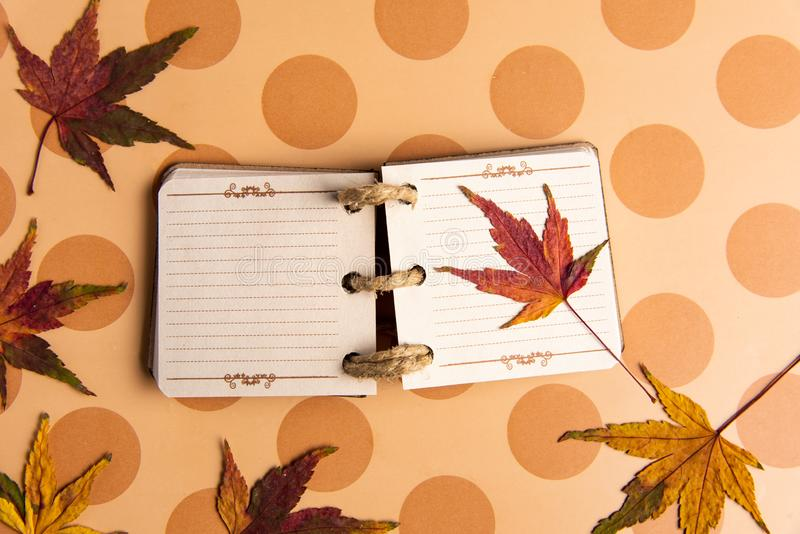 Small notebook and autumn leafs on a table royalty free stock photos