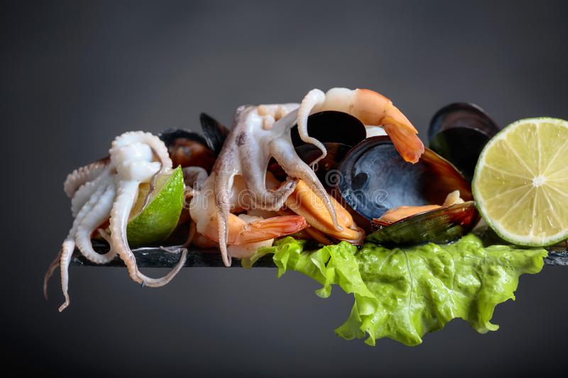 Small octopuses, shrimps and mussels on a leaf of salad stock photos