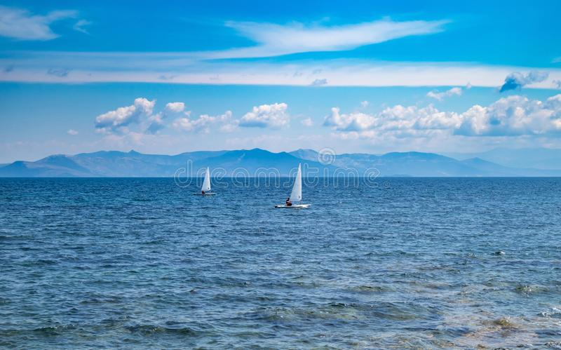 Small optimist boats with white sails, blue sky and sea background royalty free stock photography