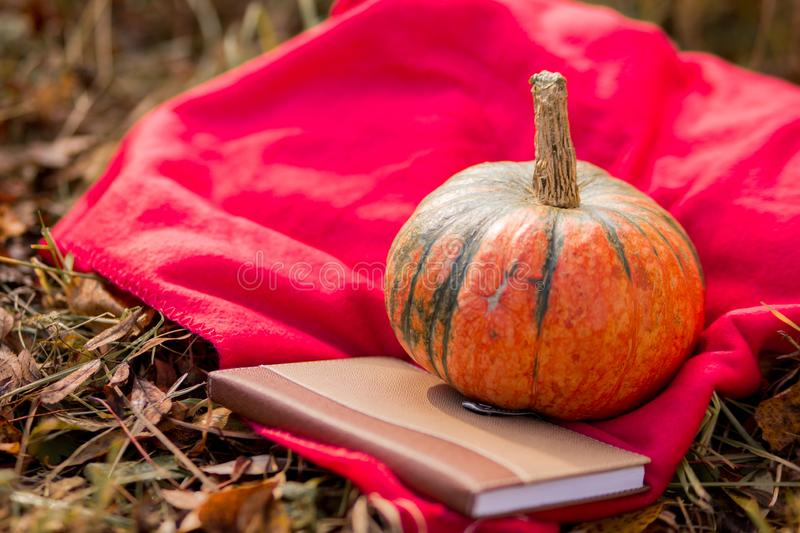A small orange green pumpkin, a brown book with leather binding lie on a red plaid on the grass. autumn still life. horizontal royalty free stock photography