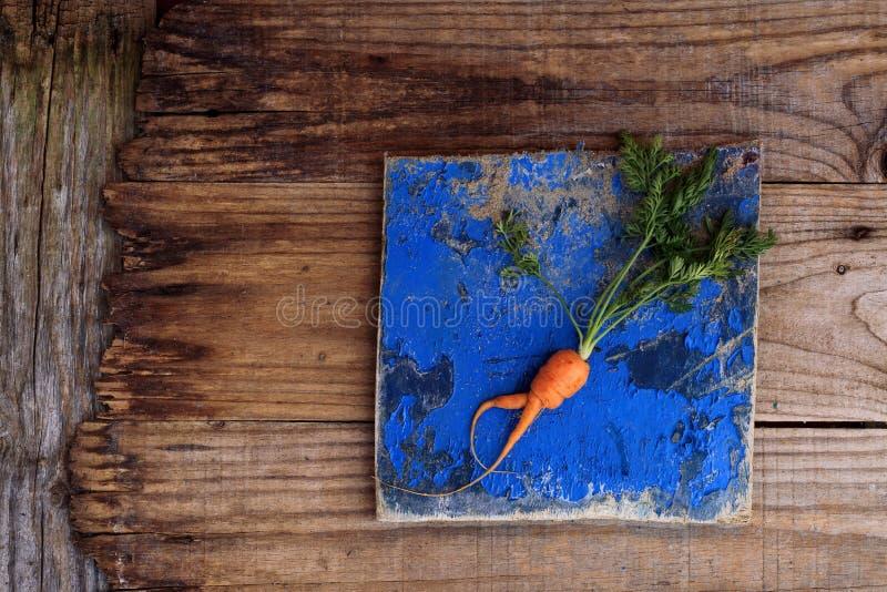 Small organic carrot royalty free stock image