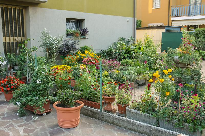 Small ornamental garden with flower pots stock image