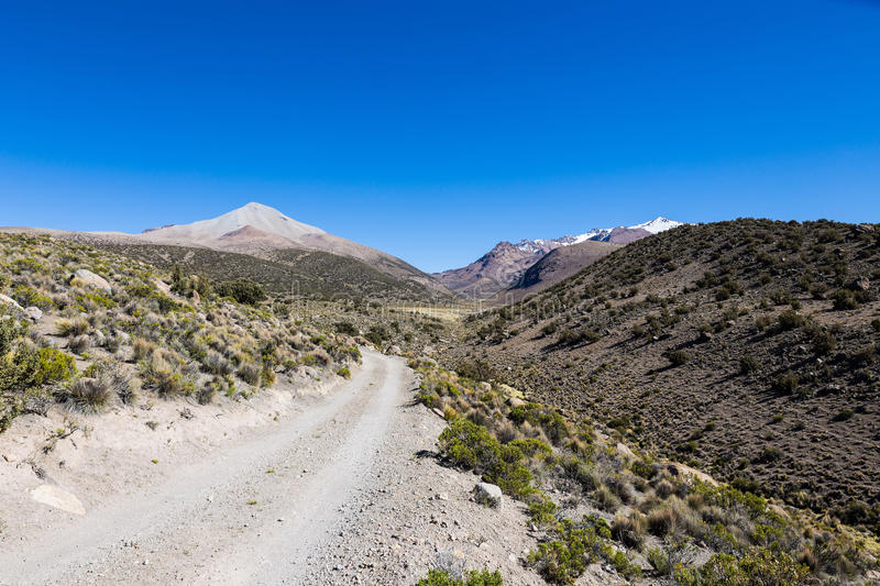 Small path in the Andes. Park Sajama, Bolivia royalty free stock image