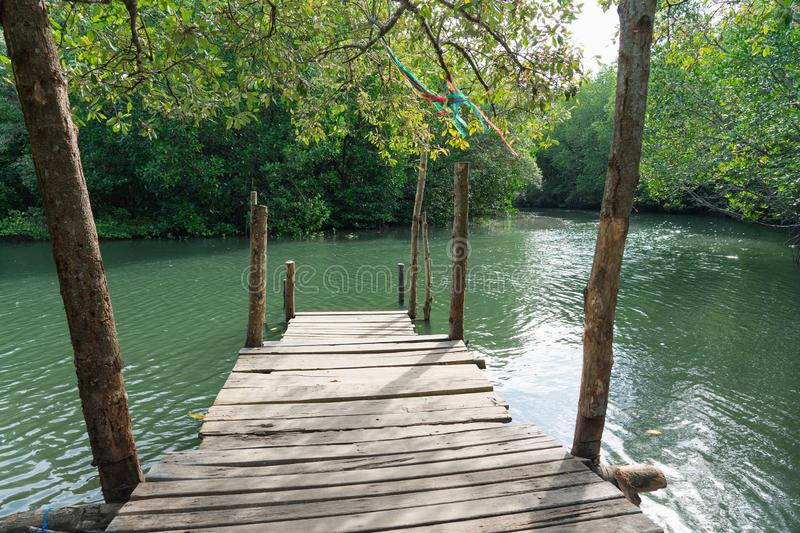 Small Pier Going out to the mangrove forest, looking at it and giving it peace and relaxation is a place to relax. And is a stock photos