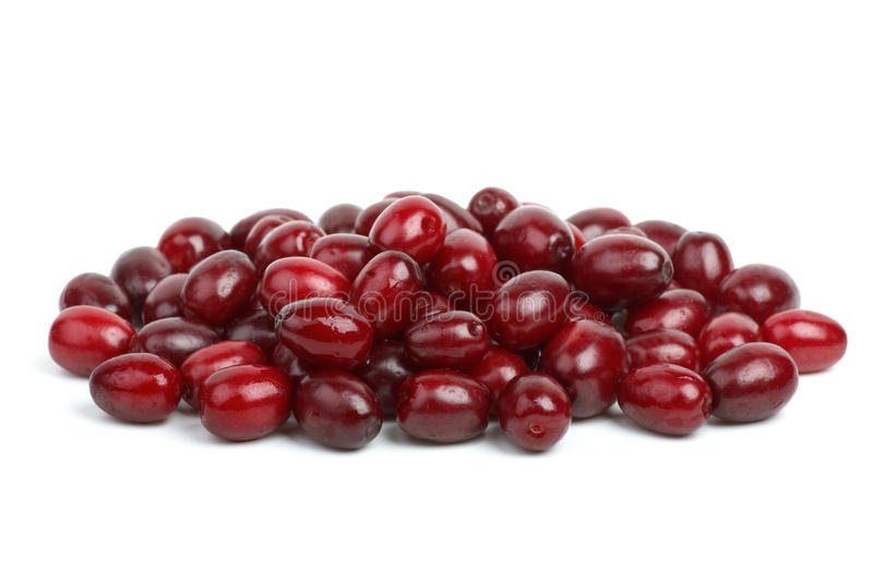 Download Small Pile Of Cornel Berries Stock Image - Image: 10911045