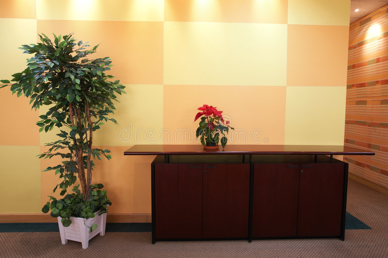 Download Small Plant In Office Lobby Stock Photo - Image of dark, cabinet: 4379812