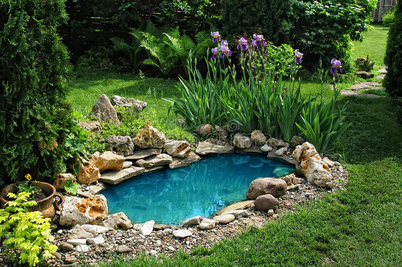 Small pond in the garden royalty free stock photo