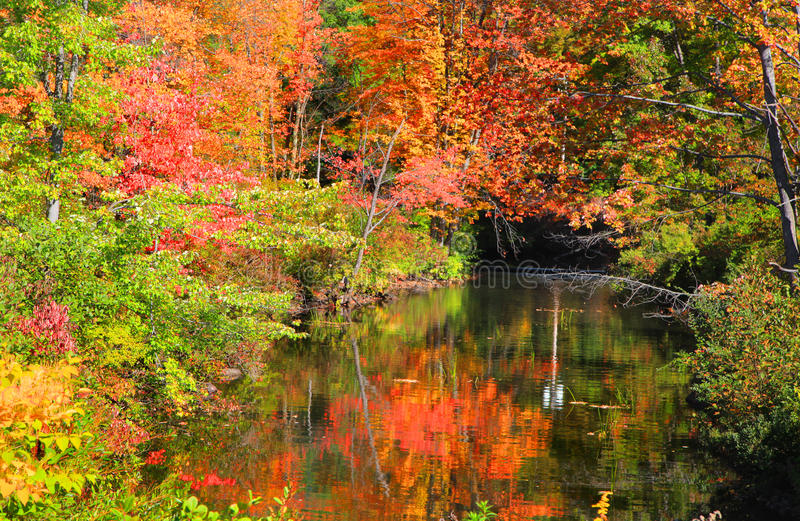 Small pond in New England stock photography