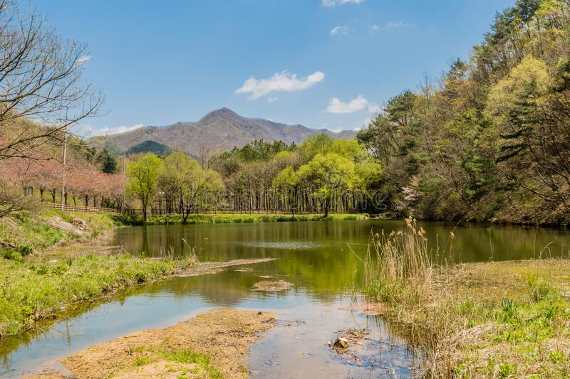 Small pond in public park. With mountains under blue sky in background stock images