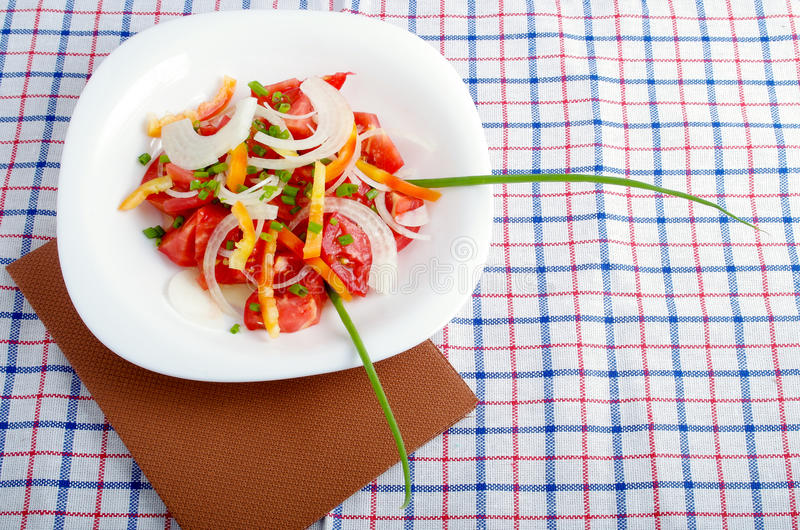 Small portion of vegetarian salad from fresh tomatoes, onions an stock photography
