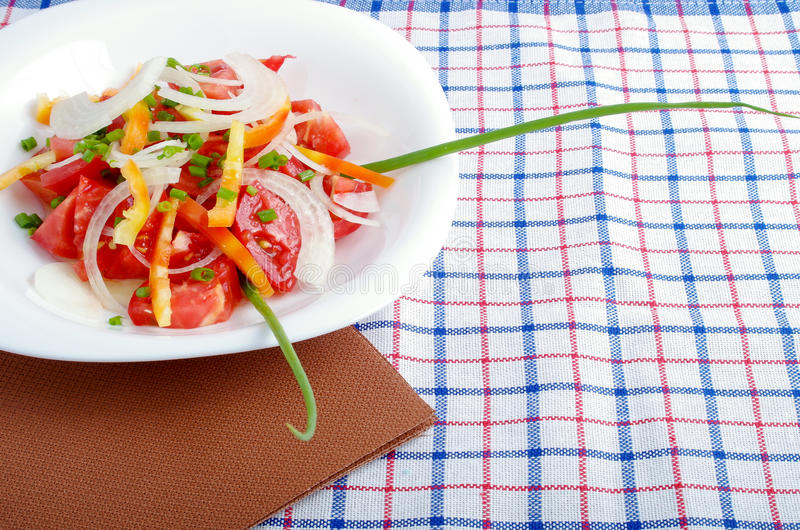 Small portion of vegetarian salad from fresh tomatoes, onions an stock image