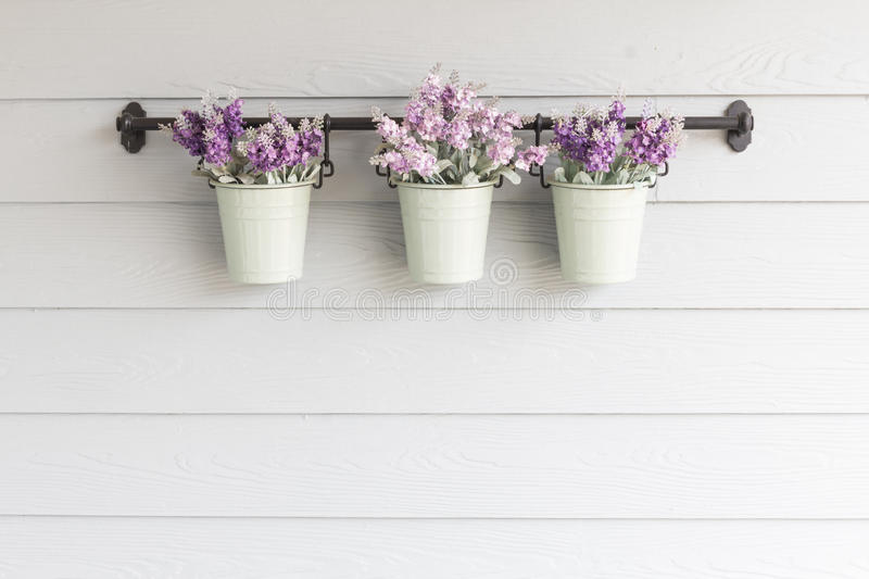 Small pot flower on board wooden wall. royalty free stock images