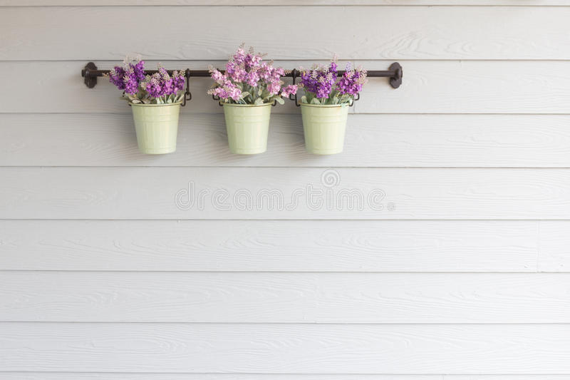 Small pot flower on board wooden wall. royalty free stock photos