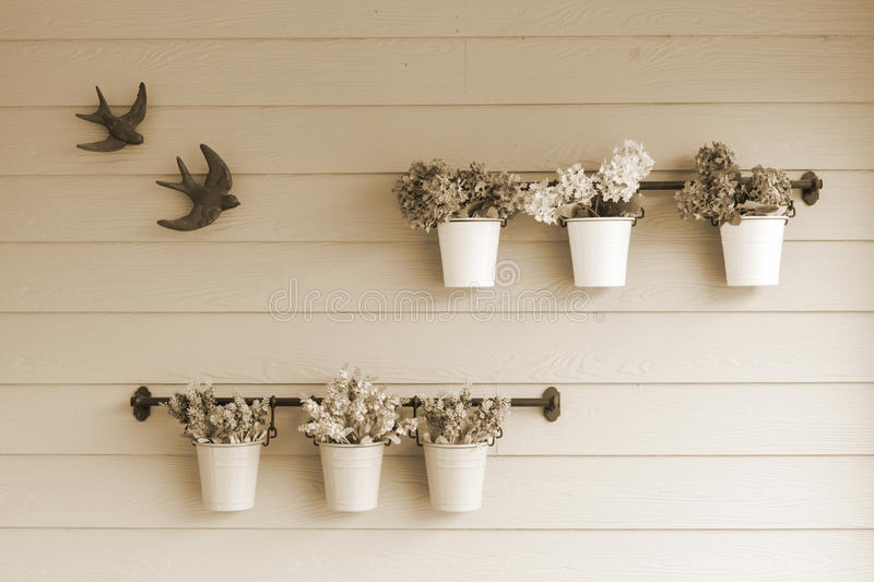 Small pot flower on board wooden wall. stock images
