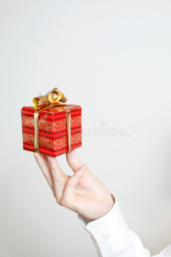 Free Small Present Stock Photography - 10891392