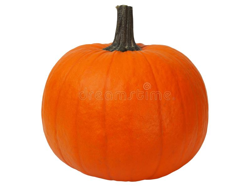 Isolated pumpkin royalty free stock image