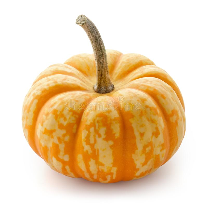 Small pumpkin with orange stripes isolated on white stock photos