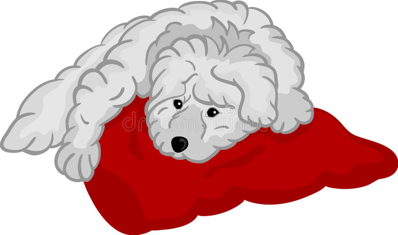 Small puppy lying on pad. Vector - Small puppy lying on red pad, isolated on background royalty free illustration