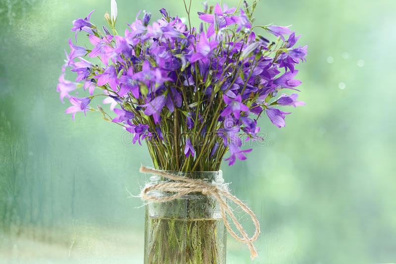 Small Purple Flowers Bouquet Stock Photo - Image of flower, bloom ...