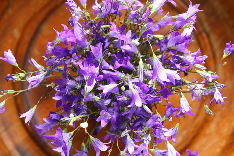 Small Purple Flowers Bouquet Stock Image - Image of beautiful, blue ...