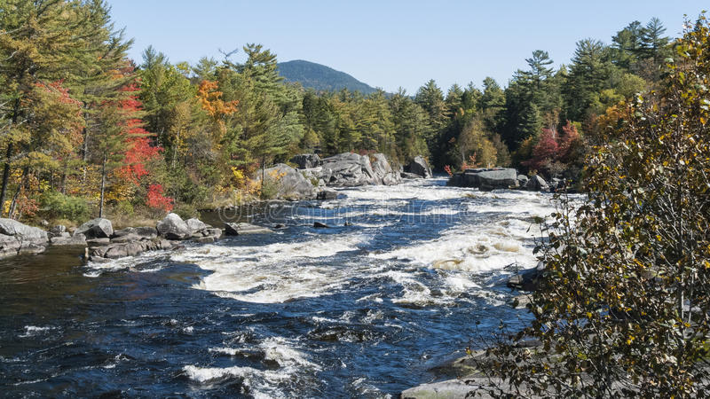 Small rapids Penobscot River royalty free stock photo