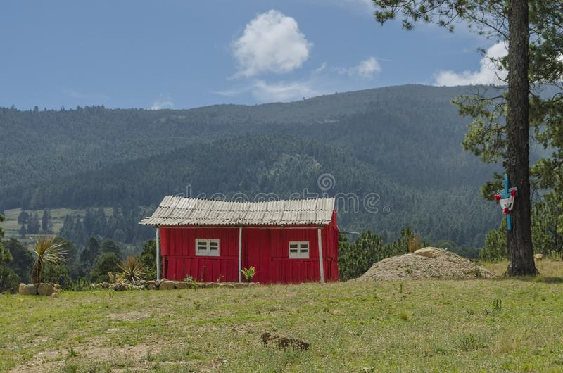 Small red cabin in the woods stock images