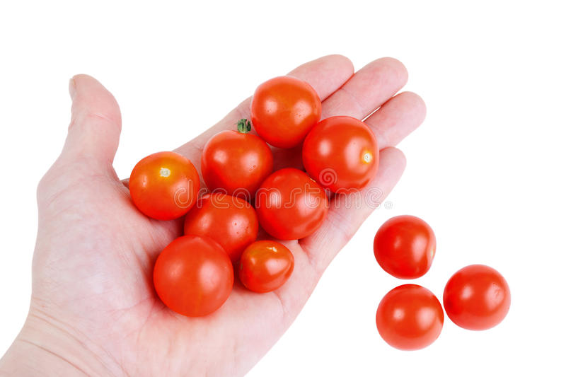 Small red cherry tomatoes stock photo