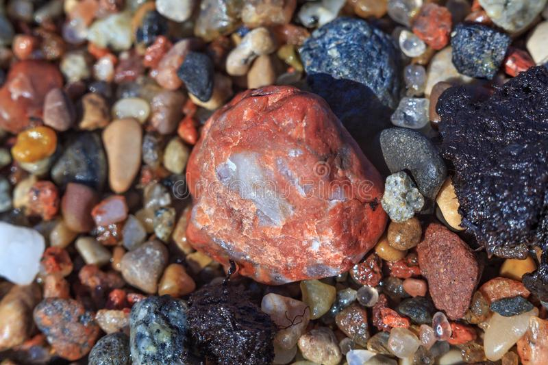 Small red stone as part of the wet coastal sea pebbles. And sand royalty free stock photo