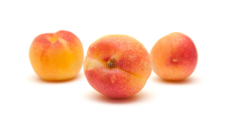Download Small Ripe Apricots Royalty Free Stock Photo - Image: 24848625