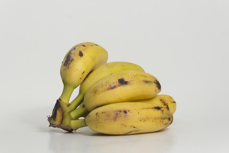 Still life of bananas. Small ripe plantains, yellow. Sweet fruit for human consumption, source of potassium and fiber stock images