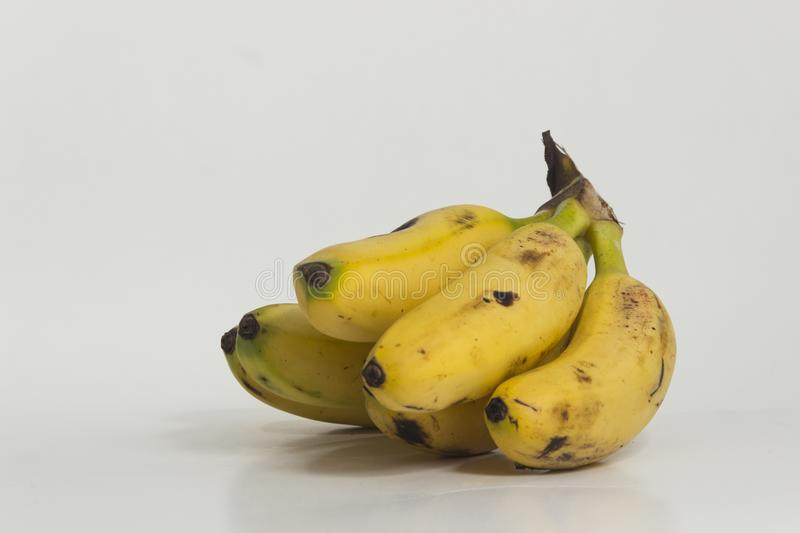 Still life of bananas. Small ripe plantains, yellow. Sweet fruit for human consumption, source of potassium and fiber royalty free stock photography