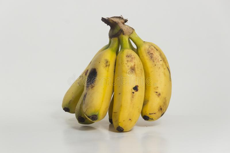 Still life of bananas. Small ripe plantains, yellow. Sweet fruit for human consumption, source of potassium and fiber stock photos